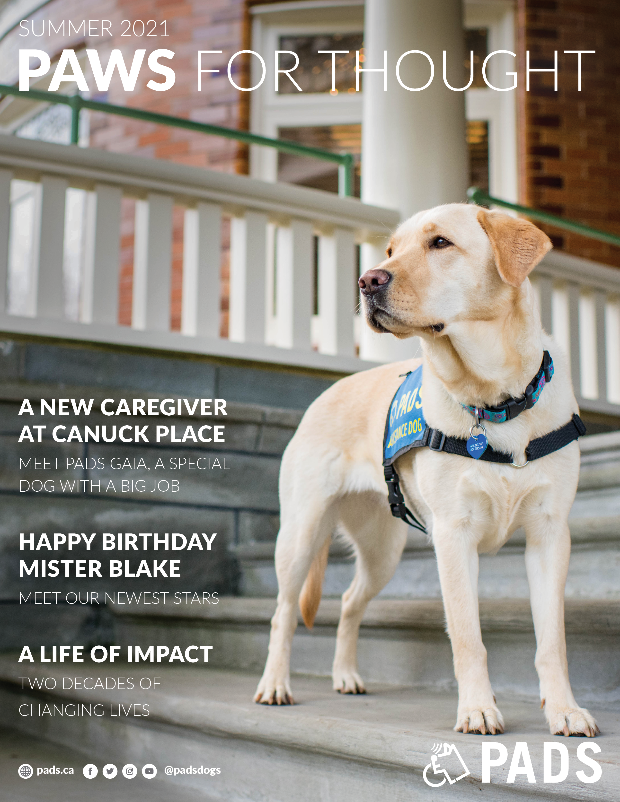 2017 Paws for Thought Newsletter